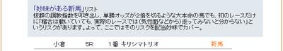 Shinba0904bmp