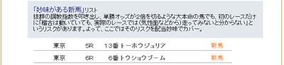 Shinba1029bmp