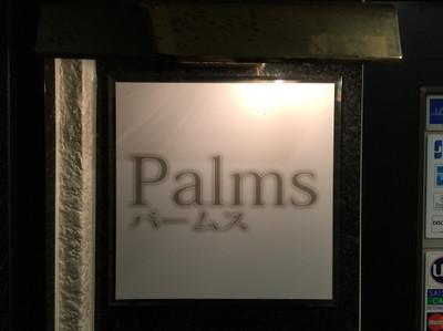 Palms01